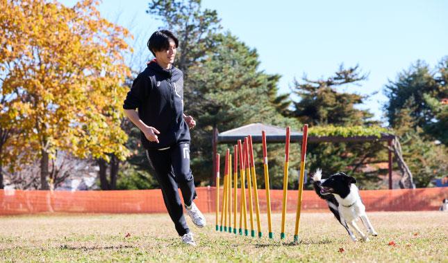 北海道エコ・動物自然専門学校画像