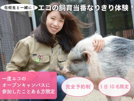 【9月も開催決定!】※オープンキャンパスに参加したことがある方限定※在校生の一緒に!エコの飼育当番なりきり体験!