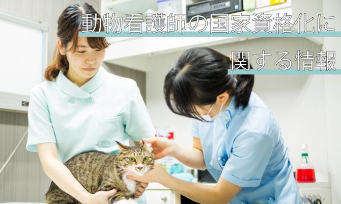 【2020年度版】動物看護師の国家資格化に関する情報