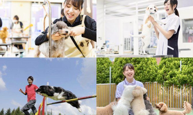 6月開催!たくさんの動物と出会えるオープンキャンパス!!AOエントリーSTART!!